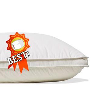 Soak and Sleep Hungarian Goose Down Pillow review