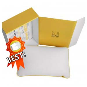 Eve Pillow Best Pillows of all time review