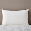WC white goose feather and down pillow